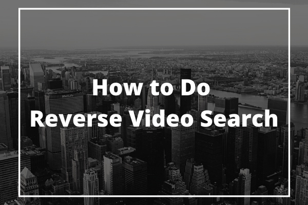 reverse video search