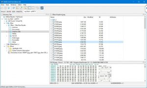 D.M. Disk Editor and Data Recovery Software