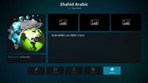 kodi arabic channels