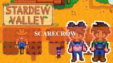 Stardew Valley Rarecrow range