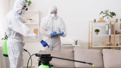 covid cleaning services
